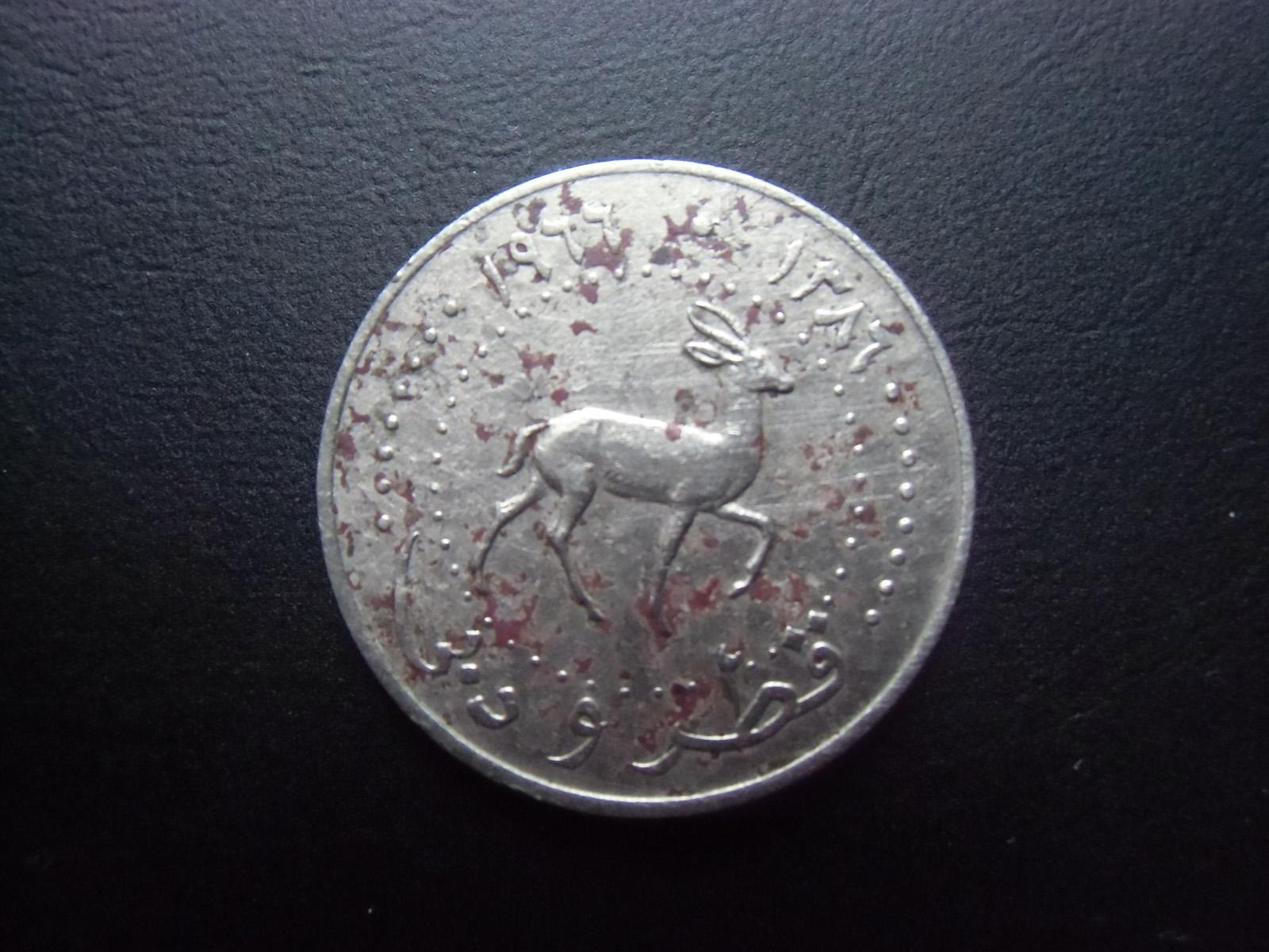 青木コイン